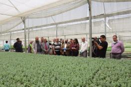 وزارة الزراعة تسلم الآلاف من الاشتال الزراعية لدعم المواطنين في جنين