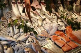 تناول الأسماك الدهنية أثناء الحمل يقي المواليد من فقر الدم