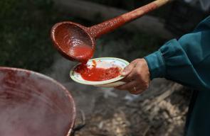 طبخ البندورة في قلقيلية والتي تعد من الأكلات الشعبية في المدن الفلسطينية