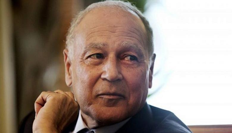 ابو الغيط يطالب اوروبا بالاعتراف بدولة فلسطين