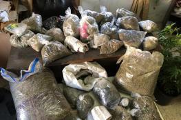 الشرطة تضبط كميات غير مسبوقة من المخدرات في منزل جنوب الخليل