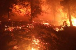 اسرائيل عاجزة  امام  الحرائق المندلعة وتنوي طلب العون