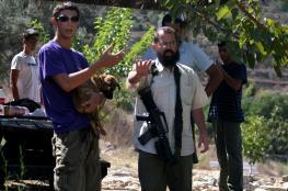 مستوطنون يطلقون النار صوب منزل في قرية جيت شرق قلقيلية