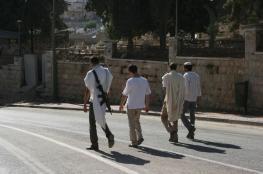 مستوطن يطلق النار على منزل فلسطيني وسط الخليل