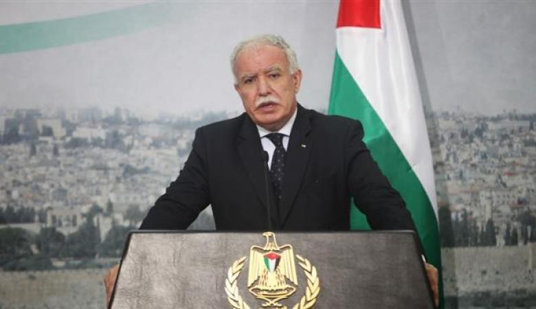 وزير الخارجية : سنعمل في الأشهر المقبلة لإفشال جهود إسرائيل بمجلس الأمن