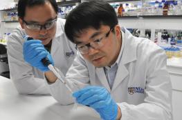 علماء صينيون يطورون تقنية مساعدة في علاج مرض السرطان
