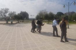 """شرطة الاحتلال تخلي """"غليك """" من الأقصى بعد قيامه باداء صلوات تلمودية"""