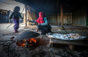 حياة بدو  النقب في الجنوب الفلسطيني المحتل