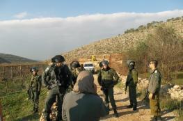 الاحتلال يعتدي على مواطنة ومتضامن أجنبي خلال قطافهما للزيتون جنوب نابلس