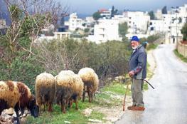 الأجواء الشتوية والباردة والأمطار تعود لفلسطين يوم الاثنين