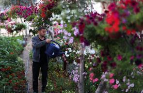 مشتل يحوي مئات الأنواع من الزهور في غزة