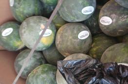 ضبط 10 أطنان من البطيخ الاسرائيلي في طولكرم