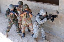 الجيش المصري يعلن تدمير مئات الاهداف واعتقال أكثر من 400 مسلح في سيناء
