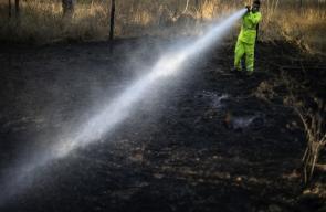 الحرائق في مناطق غلاف غزة مستمرة جراء اطلاق بالونات حارقة تجاه الاراضي المحتلة