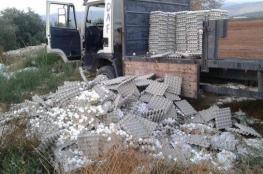 أسعار البيض تثير عاصفة واتحاد المزارعين يصدر بياناً