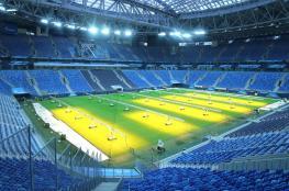 الجراد يهدد مباراة مصر والسعودية في مونديال روسيا