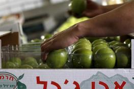 اسرائيل تواصل منع استيراد الخضار من الضفة الغربية والمزارعون يتظاهرون امام المعابر التجارية