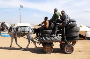 شبان يجمعون الكوشك لاشعاله في مسيرة العودة بغزة