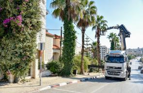 بلدية رام الله تشرع بتقليم الأشجار وزراعة أشتال في ميادين المدينة
