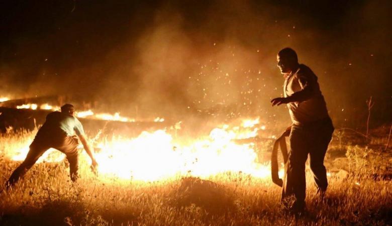 حريق هائل يلتهم مئات الدونمات في الاغوار الشمالية