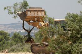 آليات المستوطنين تقوم بتجريف مساحات من اراضي المواطنين جنوب نابلس