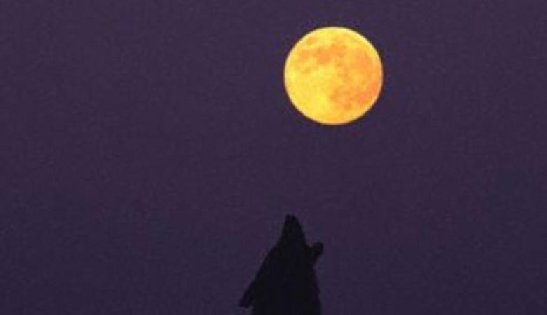 القمر يظهر بشكل مقلوب ويثير ذعر البشر