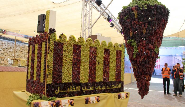 افتتاح مهرجان العنب في الخليل