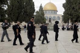 شرطة الاحتلال توصي برفع وتيرة اقتحام الأقصى من قبل اعضاء الكنيست