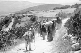 42% من سكان فلسطين لاجئون