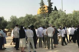 بقيادة وزير الزراعة الاسرائيلي ..عشرات المستوطنين يقتحمون الأقصى