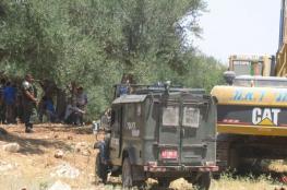 الاحتلال يقتلع 60 شجرة زيتون من اراضي بلدة جبع