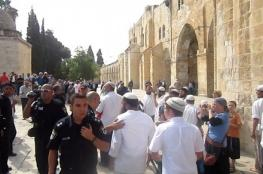 الأوقاف الفلسطينية : 30 تدنيسا للأقصى و57 منعا للأذان في الإبراهيمي الشهر الماضي