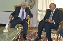 شكري : جهودنا لتحقيق سلام عادل للشعب الفلسطيني مستمرة