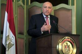 شكري : مصر ملتزمة بدعم القضية الفلسطينية