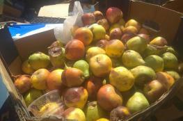 ضبط وإتلاف طن من الفواكه التالفة في جنين
