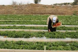 الاشغال تدعو المزارعين المتضريين لاستلام تعويضاتهم المالية