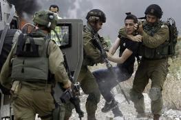 الاحتلال يعتقل 12 مواطنا من الضفة الغربية فجر اليوم