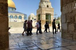المستوطنون ينفذون اقتحاما واسعا للمسجد الاقصى