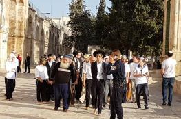المستوطنون يستأنفون اقتحاماتهم للمسجد الأقصى المبارك