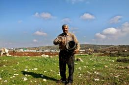 مستوطنون يعتدون على مزارعين ويمنعونهم من حراثة أراضيهم شرق يطا