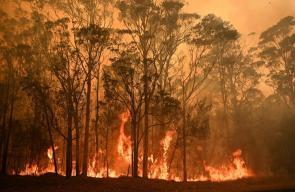 استراليا تستدعي آلاف جنود الاحتياط لمواجهة الحرائق المستعرة
