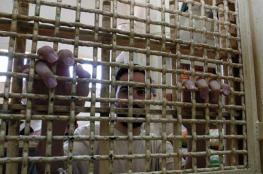 مدير مركز الاسرى : الاحتلال يتعمد التنغيص على الأسرى الفلسطينيين بالسجون