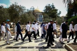 حاخام يهودي يفتي بوجوب تدنيس المسجد الأقصى غداً