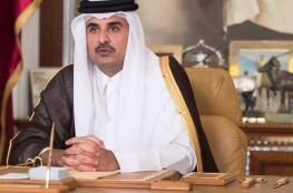 الأمير تميم : السعودية وحلفائها العرب يريدون تغيير النظام الحاكم في قطر