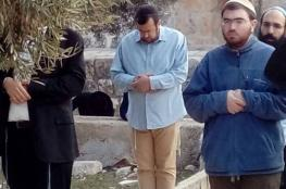 المستوطنون يؤدون صلوات تلمودية في باحات المسجد الأقصى