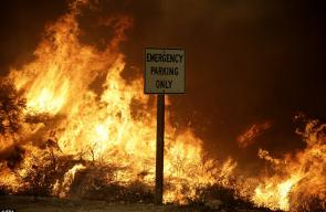 43D93E3B00000578-4847606-The_fire_raged_alongside_the_210_Freeway_in_Sunland_California_l-a-53_1504398513605