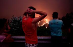 حرائق الغابات تحصد العشرات في البرتغال