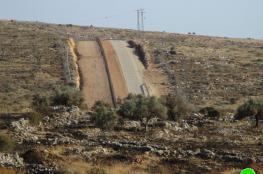 المخابرات تفشل مخططا لتسريب اراض للمستوطنين في سلفيت