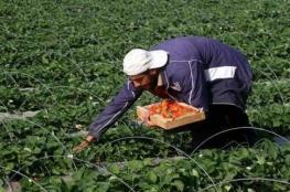 تأخر موسم الشتاء يؤدي الى عدم انتظام موسم الزراعة