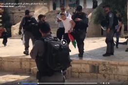 الاحتلال يعتقل فتى لرفعه العلم الفلسطيني بوجه المستوطنين المقتحمين للأقصى